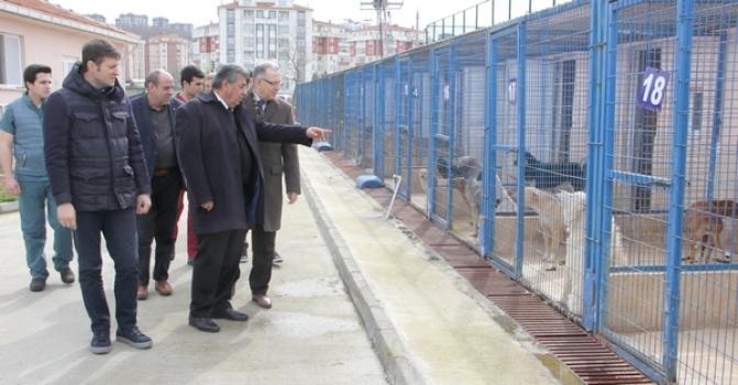 ÇOSB'den hayvan barınaklarına destek
